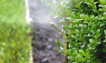 mosquito control bonita springs
